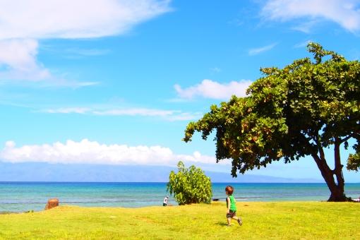 マウイ島 自然 蒼い海 雲 癒し 青い空 木 のどか ハワイ 楽園 常夏 夏休み バカンス 潮風 子供