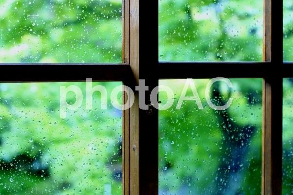 梅雨の晴れ間の写真
