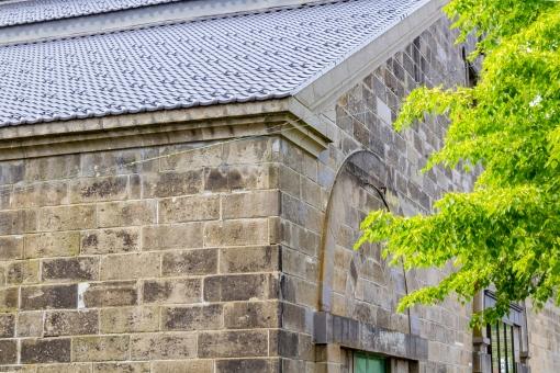 建物 外観 壁 外壁 植物 葉 葉っぱ 壁面 自然 緑 新緑 夏 倉庫 石造り倉庫 小樽 北海道