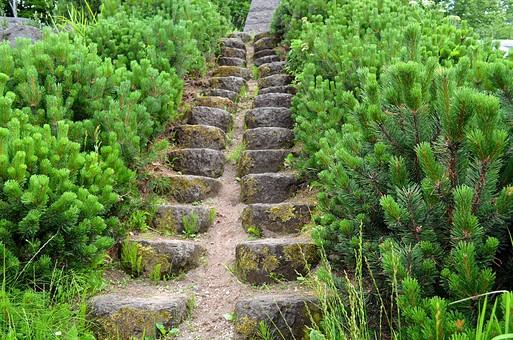 石の部屋 階段 風景 素材 石 岩 屋外 石造り 自然 草 ブロック  景色 風景 屋外 外 樹木 木 樹 石段 植物 道 山道 低木 緑 葉