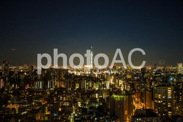 文京シビックセンターから見えるスカイツリー8の写真