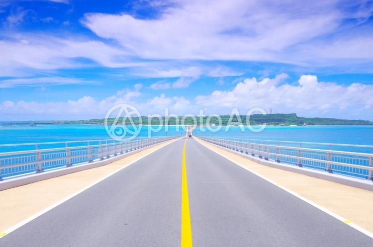 【 沖縄・道路 】の写真