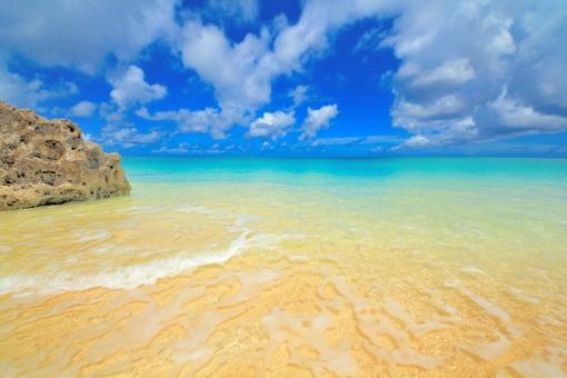 南国のビーチの写真