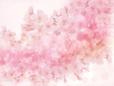 春 ピンク 4月 入学式 入学 卒業式 卒業 お祝い 祝い きらきら 花 花見 輝き サクラ さくら 桜 桜吹雪 花柄 和風 和柄 和 桃色 ピンク 淡い 背景素材 背景 素材 テクスチャ テクスチャー 白