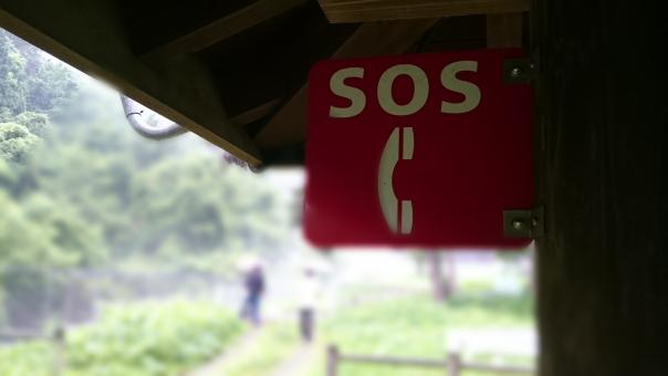 SOS,緊急,ボタン,案内,看板,表示,防犯,セキュリティー,警備,安全,安全装置,非常,非常時 電話 観光地 森林 避難 退避 連絡 つなぐ 繋ぐ つながる 繋がる 連絡する クマ 熊 くま 警戒