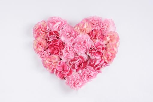 花 植物 ハート型 バレンタイン 母の日 気持ち 贈り物 プレゼント LOVE ラブラブ なかよし ドキドキ ときめき ウエディング 結婚式 テクスチャ 背景 壁紙 ピンク色