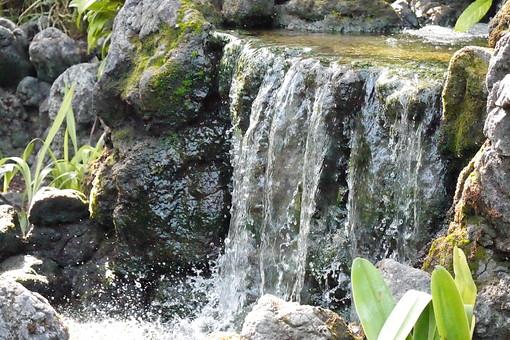 滝 瀧 たき オアシス 流水 水流 自然 水 風景 景色 緑色 河川 水しぶき しぶき 流れ 癒し マイナスイオン 苔 こけ コケ 緑 屋外 茂る 生い茂る 生える 森 林 落ちる 流れる マイナスイオン 岩 石 植物 葉 葉っぱ