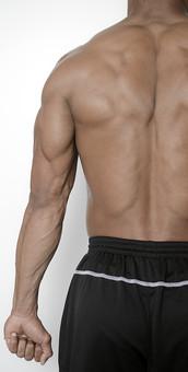 筋肉 マッスル ボディビルダー ボディ 体 人間 人体 男性 男 漢 強い 屈強 頑丈 スポーツ 筋力 筋トレ ボクシング ボクサー トレーニング スポーツジム アスリート ストイック ビルドアップ 憧れ ダイエット ムキムキ 背中 後姿 背筋