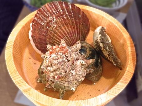 貝 貝類 魚介 魚貝 魚貝類 魚介類 海鮮 海鮮料理 日本食 和食 日本料理 食べ物 食品 食材 料理 調理 グルメ ほたて 帆立 ホタテ さざえ 栄螺 サザエ はまぐり 蛤 ハマグリ 白蛤 ホンビノスガイ 寿司桶 食糧