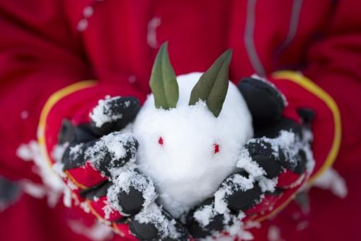 ゆきうさぎ 雪兎 雪ウサギ 冬 南天 植物 葉 実 可愛い かわいい お正月 和 雪像 雪肌 雪遊び 子ども 子供 手 手のひら 人物