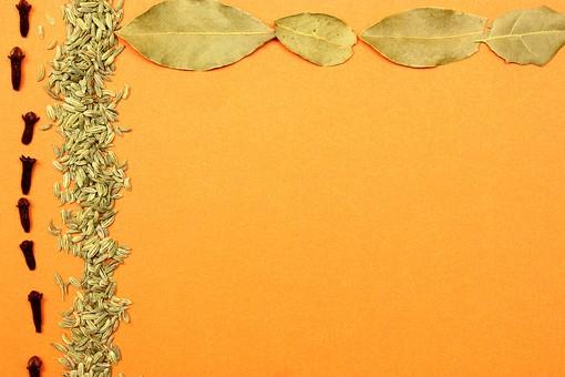 スパイス ハーブ フェンネル フェンネルシード 種 実 グローブ ローリエ 月桂樹 月桂樹の葉 葉 調味料 香辛料 香料 食べ物 食材 乾燥 フレーム 余白 コピースペース テキストスペース 背景 背景素材 バックグラウンド 緑 赤 橙 オレンジ 黄 植物 自然 枠 囲み枠 並べる シンプル