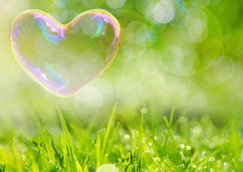 晴れた草原に、ハートのシャボン玉の写真