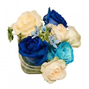パス入り】青と白のバラの写真