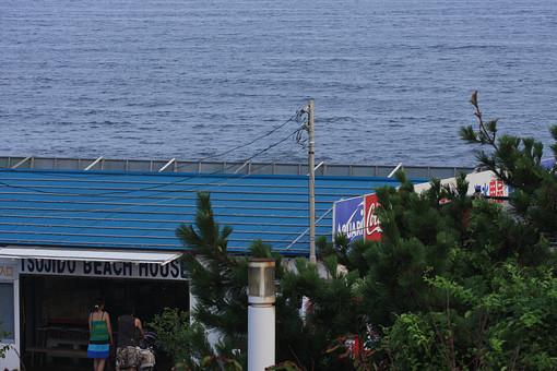 海 海岸 海辺 自然 さざ波 ナチュラル サーフィン マリンスポーツ 人物  波  湘南 風景 夏 海の家 緑 植物 シーサイド 凪 男性 女性 カップル