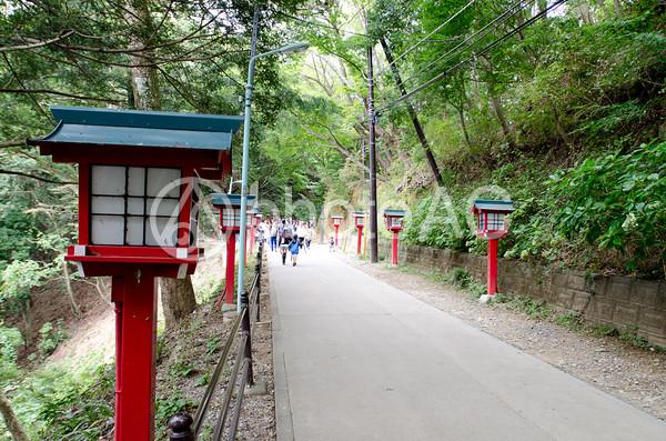 高尾山薬王院境内への道の写真