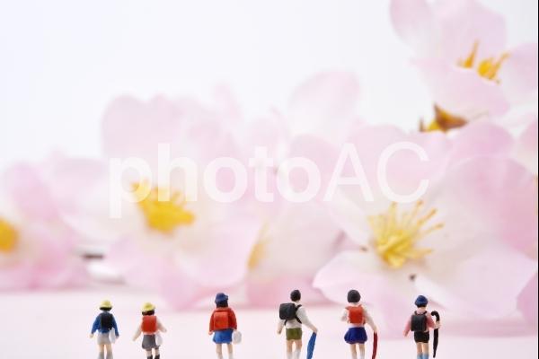 並んだ小学生 春が来たよの写真