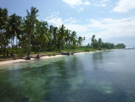 セブ フィリピン 海 青空 木 離島 ビーチ