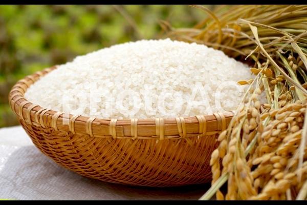はぜかけ米の写真