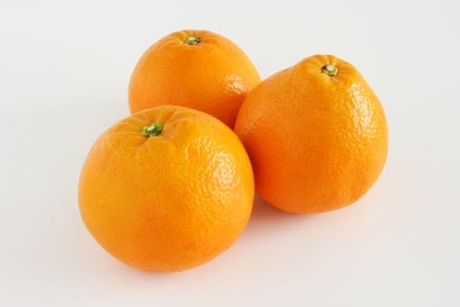 いよかん イヨカン 伊予柑 Iyokan IYOKAN iyokan 柑橘類 柑橘系 かんきつ カンキツ 旬 果物 季節 冬 デザート スイーツ みかん 橙色 オレンジ 果実 果肉 皮 ピール ネット通販 カロリー 栄養 背景 素材 壁紙 くだもの