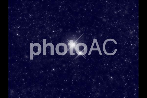 星の親子の写真