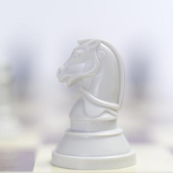 チェス 駒 ナイト マス マイナーピース 騎士 白 ホワイト 先手 チェスピース ピース ゲーム チェスボード チェス盤 テーブル ルール 知能 考える 予想 予測 技能 戦略 勝者 敗者 勝利 敗北 アップ