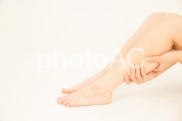 美しい脚 の写真