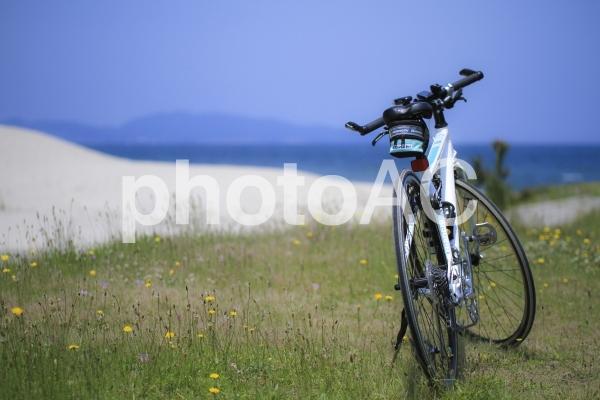 自転車と海の写真