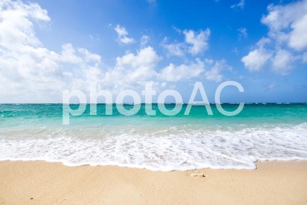 【 沖縄 ☆ ビーチ 】の写真
