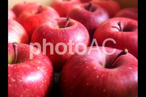 りんごアップの写真