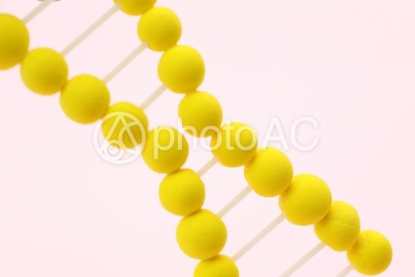DNA35の写真
