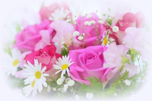4月 マーガレット ブーケ 入学 成人 ウェディング バースディカード 卒業 記念日 メッセージカード 可愛い かわいい 優しい ソフト やわらかい マクロ クローズアップ アップ 接写 バレンタイン バレンタインデー ホワイトデー 結婚記念日 祝う 感謝 ありがとう 贈る 愛 恋 恋愛 テーブルフォト ギフト 母の日 父の日 緑 植物 初夏 五月 六月 メッセージ カード フラワーアレンジ 行事 バラ ばら 薔薇 花 華やか 綺麗 きれい 贈り物 美 美しい 美容 アレンジ 花束 バースデー 誕生日 お祝い プレゼント バック 素材 背景素材 背景写真 ローズ フラワー 花びら バックグラウンド エステ イメージ アレンジメント いやし 健康 アロマ 5月 6月 10月 春 秋 幸せ 幸福 結婚 結婚式 癒し リラクゼーション リラックス 背景 壁紙 ピンク 明るい