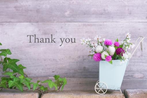 センニチコウ ポンポン花 キャリー 手押し車 メッセージ ありがとう 感謝 気持ち 英文字 英単語 英語 単語 アルファベット アイビー