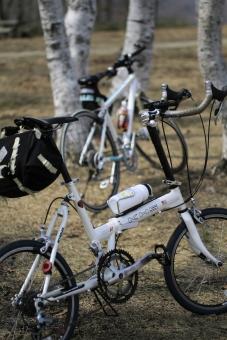 高原 白樺 自転車 蒜山高原 真庭市 岡山 ポタリング サイクリング 撮影 カメラ