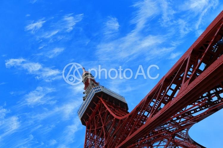 東京タワー画像(右から伸びる)