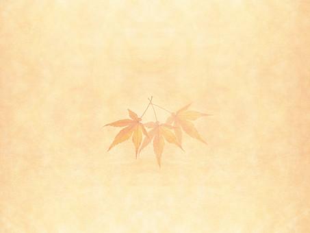 モミジ もみじ 紅葉 椛 かえで カエデ 楓 葉 植物 自然 秋 余白 背景 背景素材 バックグラウンド テキストスペース コピースペース 暖色 空間 質感 テクスチャ 赤色 赤 季節 並べる 整列 透ける 透かし 半透明 ベージュ 重なる