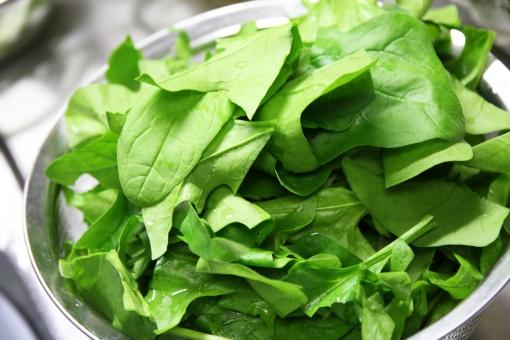 ほうれん草 ほうれんそう ホウレンソウ 野菜 やさい ヤサイ 栄養 栄養価 健康 レシピ おひたし 炒め物 炒めもの 茹でる 茹で方 ゆでる 料理 調理 クロロフィル カルシウム 緑黄食野菜 鉄分 ビタミンC カロテン 胡麻和え 食材 材料 具材 ソテー ベーコン