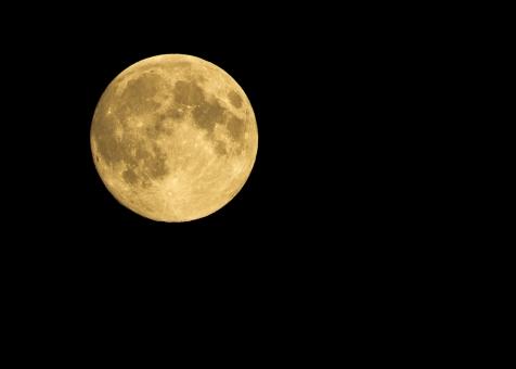 秋 月 つき ムーン 十五夜 うさぎ 秋 風景 宇宙 天体