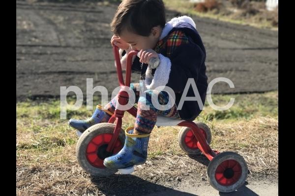 サイクリングの写真