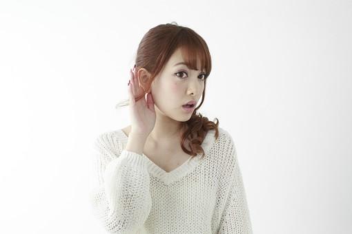 人物 女性 日本人 若い 20代 セーター ニット カジュアル モデル かわいい キュート ポーズ おすすめ 屋内 白バック 白背景 上半身 仕草 耳 耳を澄ます 聞く 聴く 音 注意深い 噂 うわさ 片方 片手 mdjf005
