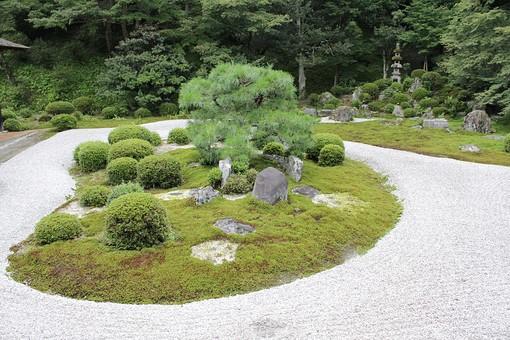 京都 木 岩 日本庭園 枯山水 夏 隙間 和 日本 庭園 庭 五重塔 ガーデン 園芸 自然 ネイチャー 緑 グリーン 松 白い 白色 ホワイト 落着き 落着く 落ち着き 落ち着く