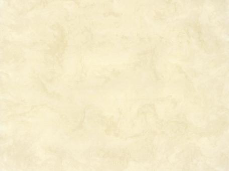 用紙 ベージュの写真