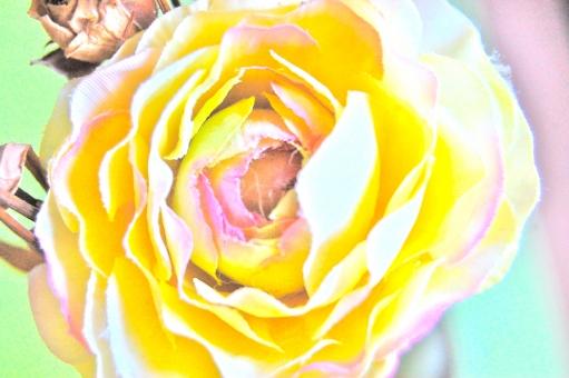 花 フラワー 造花 イミテーション イミテーションフラワー フェイク フェイクフラワー ばら バラ 薔薇 鮮やか 彩度 黄色 黄