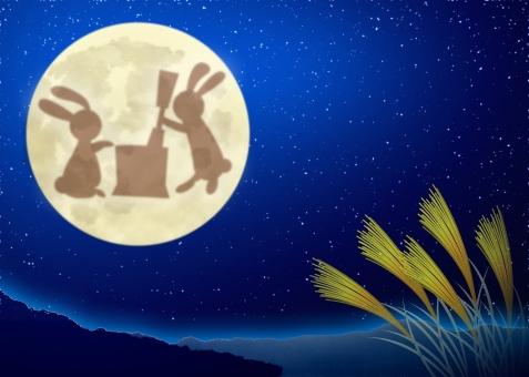 十五夜 中秋の名月 仲秋の名月 うさぎ ウサギ 兎 満月 秋 月 月光 月見 お月見 名月 月夜 背景 背景素材 バック バックグラウンド background moon full moon ススキ すすき 芒 薄 月あかり 夜 夜景 月明かり 月灯り