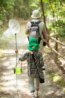 植物 旅行 親子 子供 緑 風景 景色 公園 きれい 散歩 葉っぱ 自然 夏休み 癒し 優しい 草花 森林 環境 シルエット 日光 虫取り 美しい 季節 青い 野草 栽培 スナップ のどか 保養 虫網