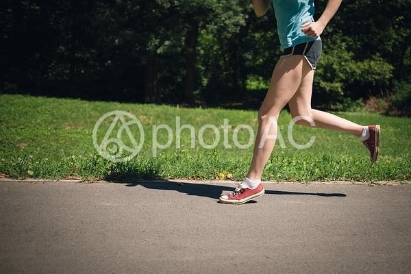 公園でジョギングする女性19の写真