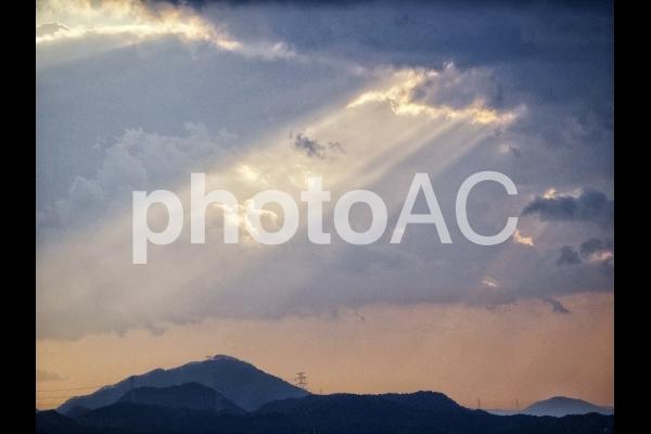 降り注ぐ光【2】の写真