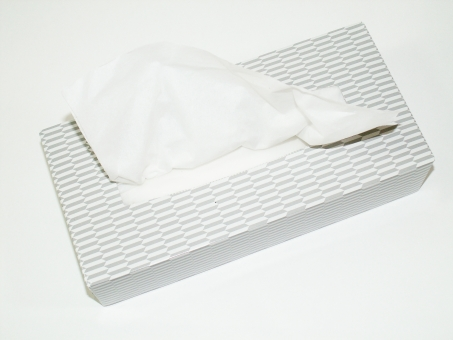 ティッシュ ボックスティッシュ boxティッシュ ティッシュペーパー tissues paper 紙 ちり紙 しろ 白 箱