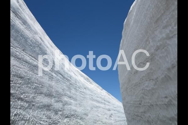 立山 雪の大谷の写真