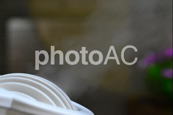 乾燥、花粉、風邪予防、加湿器の写真