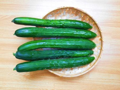 きゅうり キュウリ 胡瓜 ウリ科 cucumbera 野菜 緑 黄瓜 緑黄色野菜 栽培 農業 サラダ 料理 漬物 つる かっぱ 河童 ざる 水分 木瓜紋 夏野菜